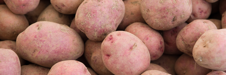 Cooperative Extension: Potatoes