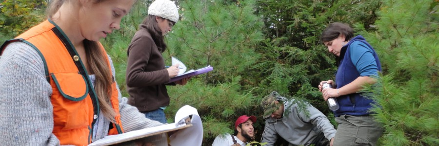 Ecology & Environmental Sciences Undergraduate Program