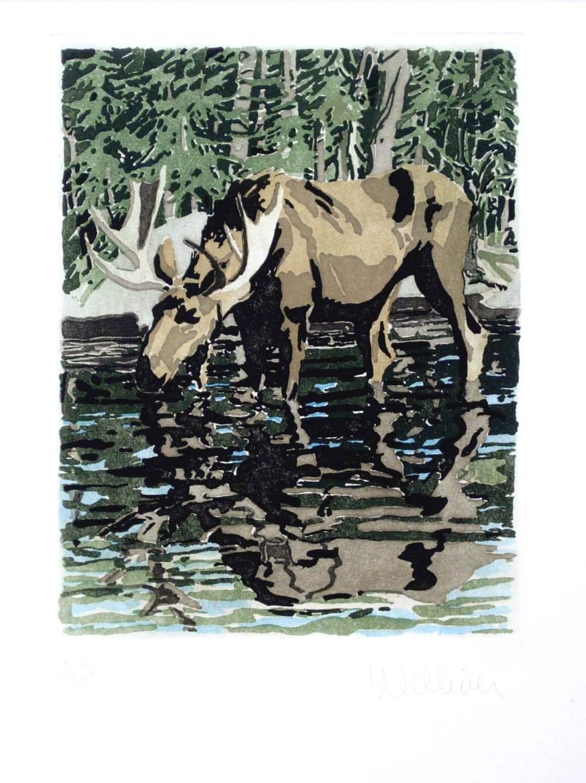 Moose, 1981