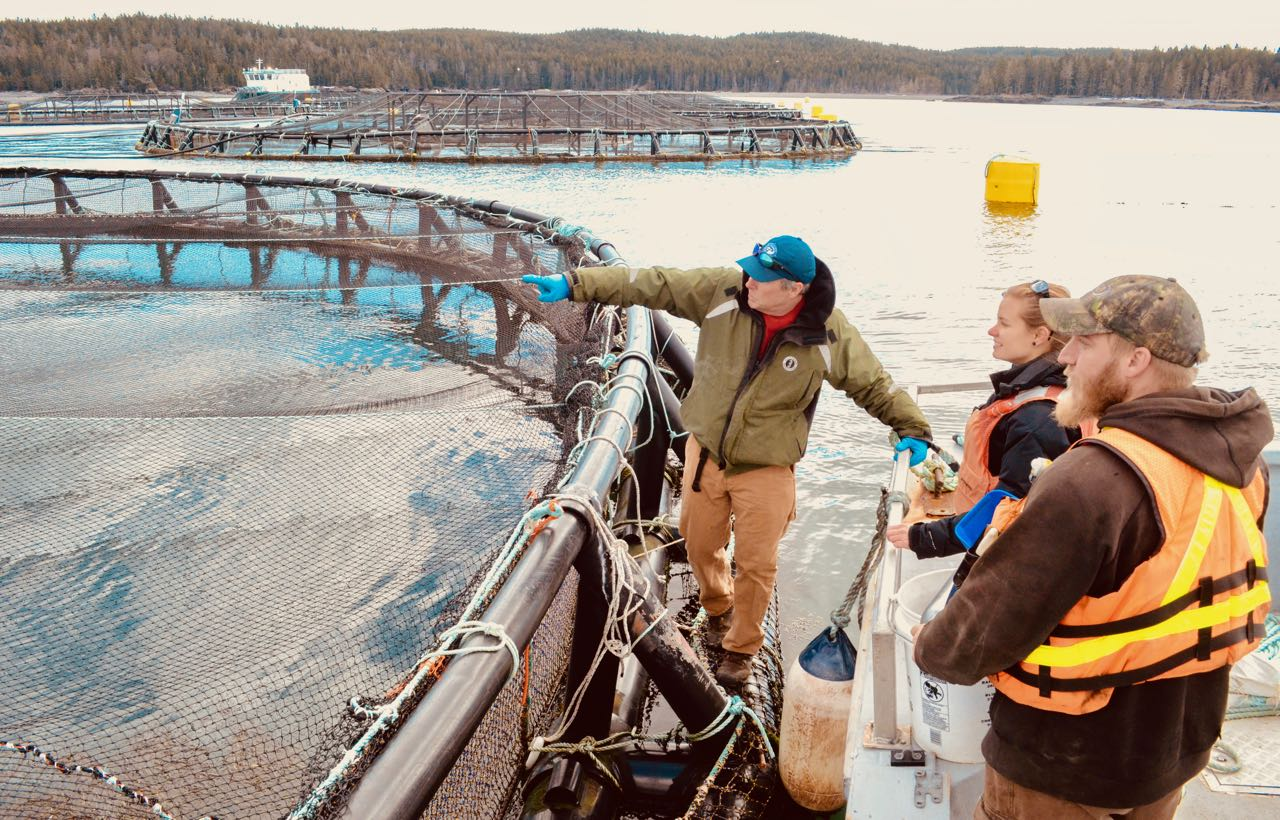 SEANET 2018 Mini-Grant RFP - Aquaculture Research Institute