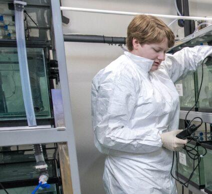 Aquaculture Research Institute (Salmon Tanks)