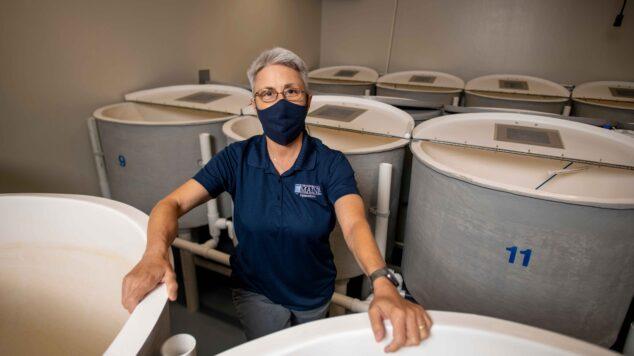 Debbie Bouchard in the AAHL lab