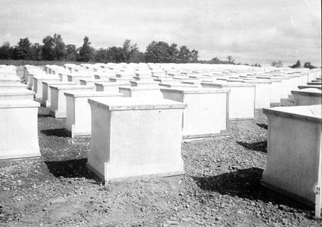 AF-historic-36-20C-potato-cages