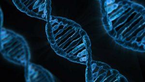 microscopic photo of DNA