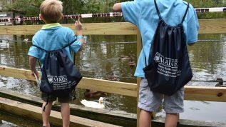 Young boys feeding ducks