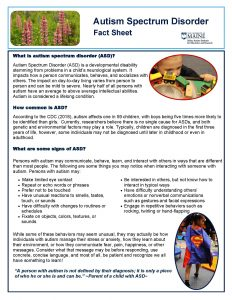 photo of ASD Fact sheet - text and photos of children playing