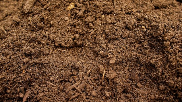 up close and personal with soil