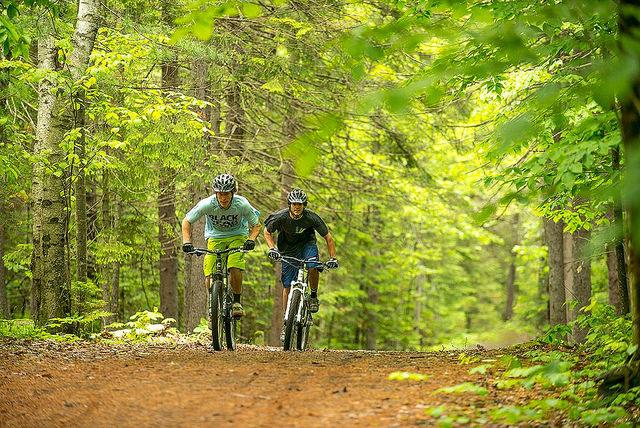 umaine students utilizing bike path trails