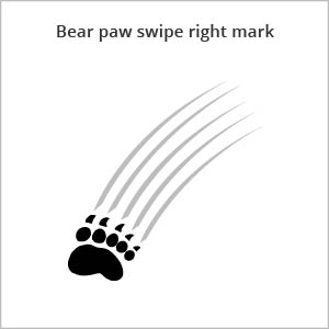 bear paw swipe right mark