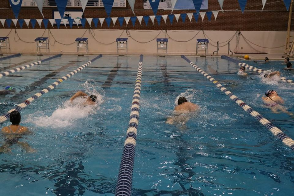 lap swimmers