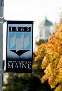 The University of Maine flag with tree and building in background