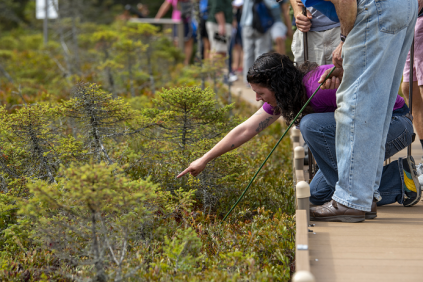 Photo of student pointing at plants in bog