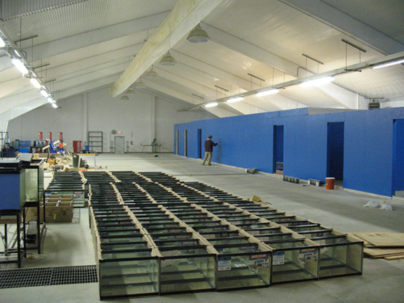 Aquaculture business incubation facility