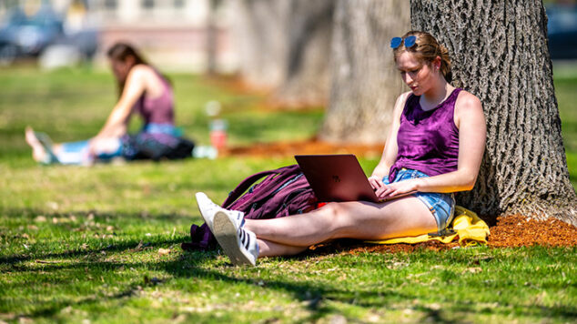 student sitting under tree on laptop in the summer