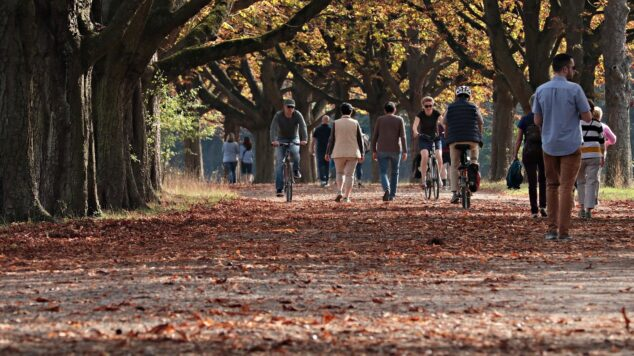 People walking and biking between autumn trees
