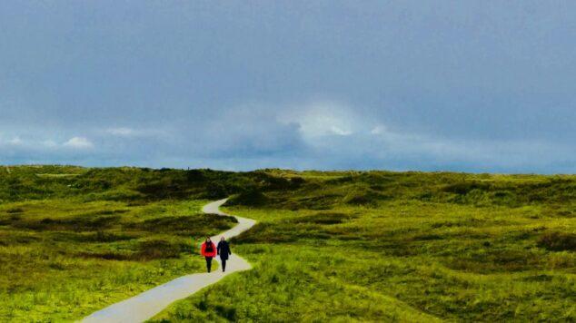 2 people walking on a winding path in a green field