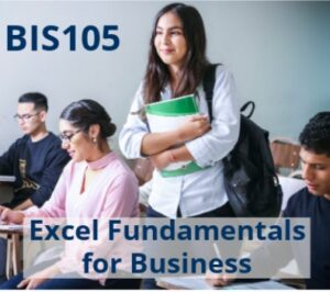 students in a class with the words BIS 105 Excel fundamentals for business