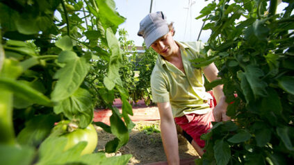 sustainable agriculture student working in garden