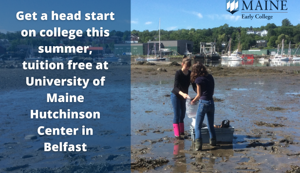 Two Students Conducting Field Research in Belfast Bay