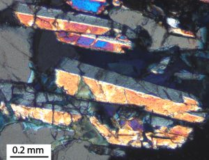 Photomicrograph of twinned boralsilite prisms. Crossed nicols. Larsemann Hills