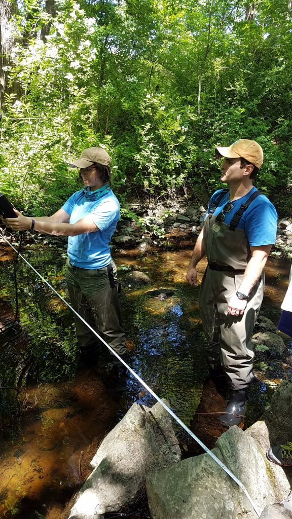 collecting data in a stream