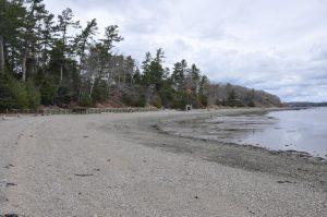 sea wall prevents erosion