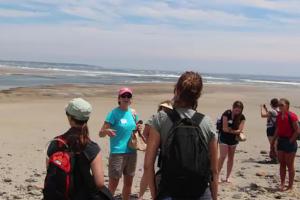 Students on a beach