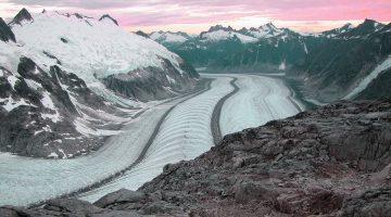 Juneau Research