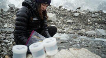 Heather Clifford-Everest