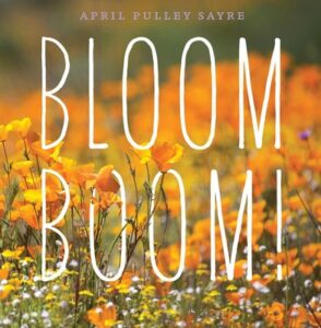 bloom-boom-cover