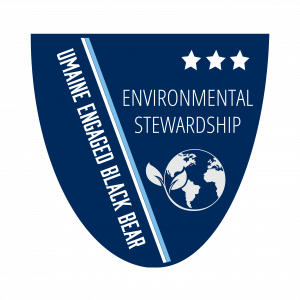 Environmental Stewardship Level 3 Badge