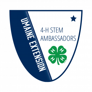 4-H Stem Ambassadors Level 1 Badge