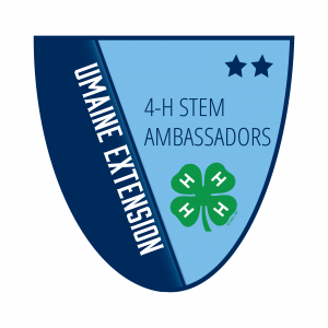 4-H Stem Ambassadors Level 2 Badge