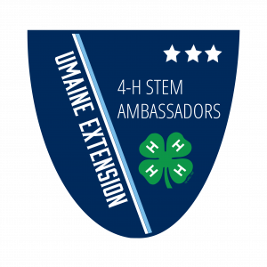 4-H Stem Ambassadors Level 3 Badge