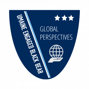 Global Perspectives Level 3 Badge