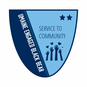 Service to Community Level 2 Badge
