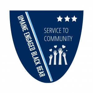 Service to Community Level 3 Badge