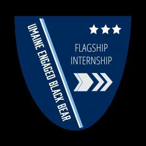 Level 3 Flagship Internship Badge