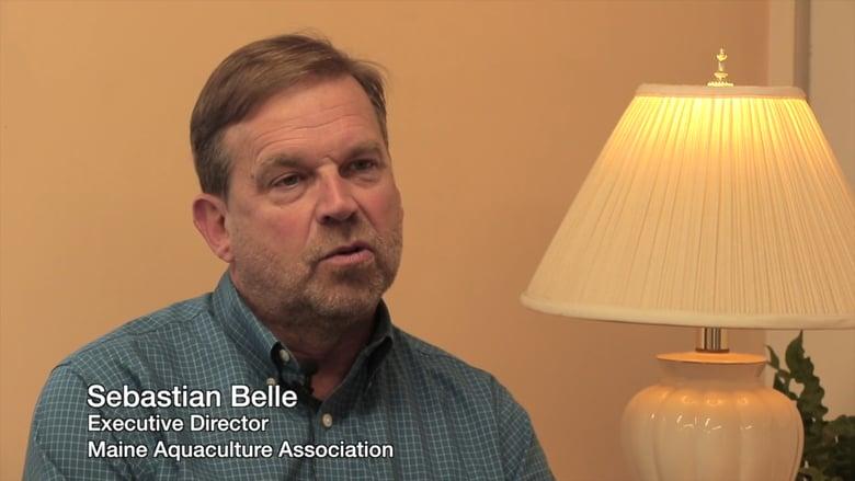 featured image for SEANET Stakeholder Spotlight Video: Sebastian Belle