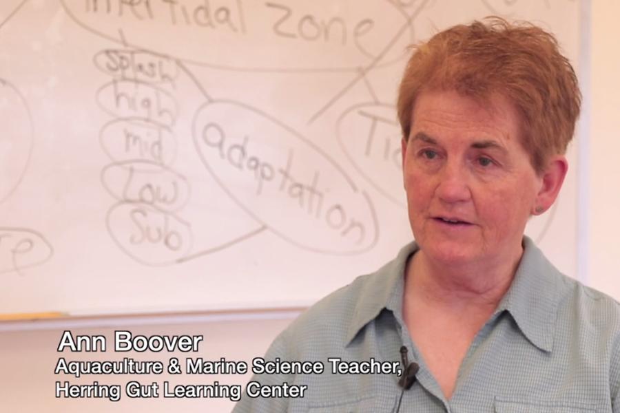 featured image for SEANET Stakeholder Advisor Spotlight: Ann Boover