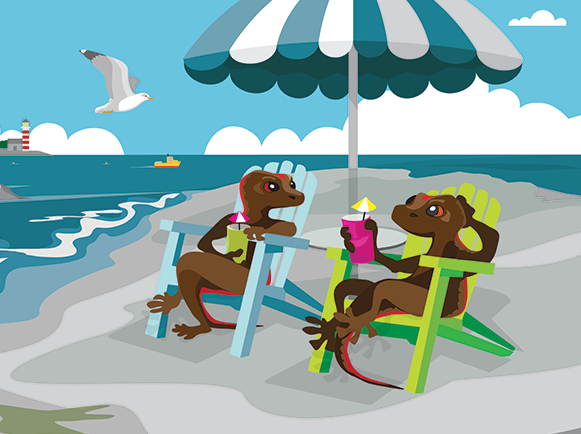 Cartoon salamanders relaxing on island beach