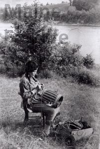 P8305_Maliseet_woman_making_baskets_in_Indian_Island_ME
