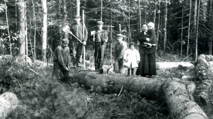 Four men standing near fallen tree with lumbering tools in hand, woman with small child in arms and small child standing on top of fallen tree; Lincoln County, Maine.