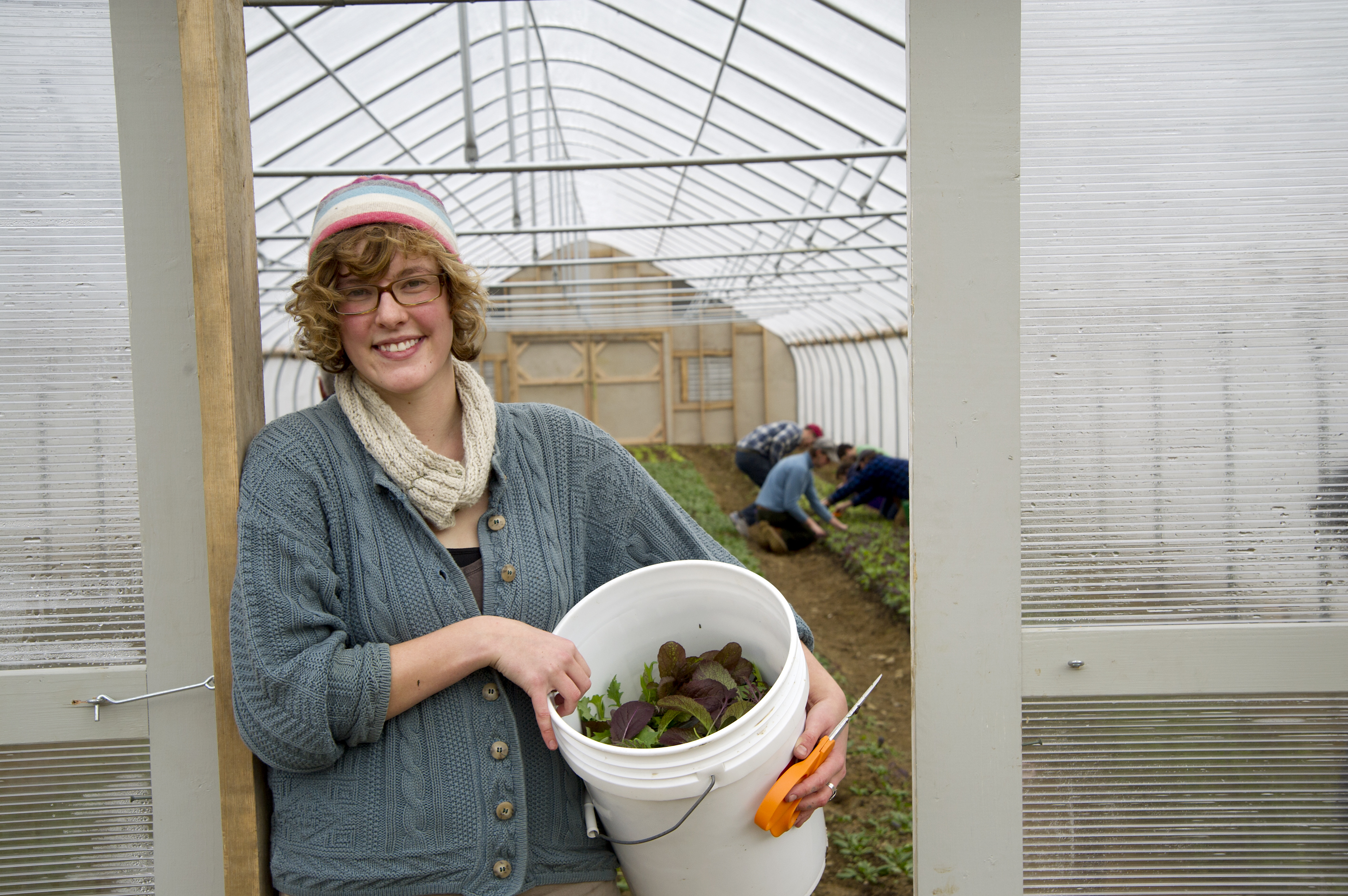 Student harvesting UMaine Greens.
