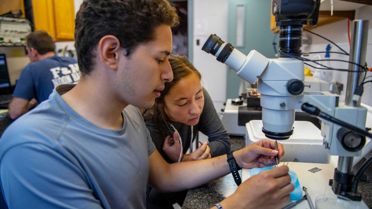 two students looking at a microscope