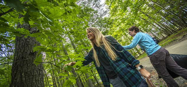 graduate students Ruth van Kampen and Kelly French collecting samples from a forest