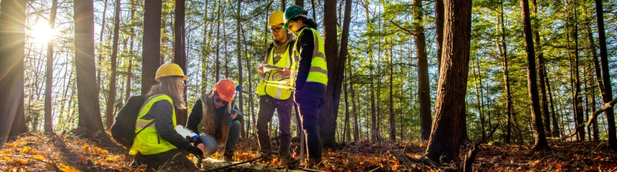 four people in reflective vests working in a forest