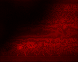 Visualization of an oil layer