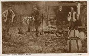 Maine Woods postcard