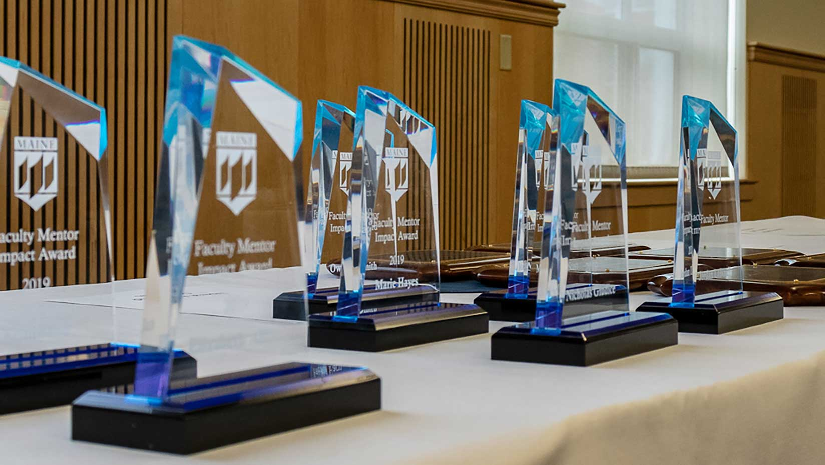 Faculty Mentor Awards image